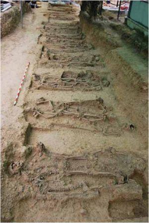 Documentados 47 cuerpos inhumados durante la represión franquista